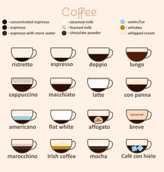 espresso guide thin line icon card vector image