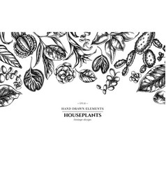 Floral design with black and white ficus iresine vector