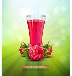 Raspberry and a glass of raspberry juice vector