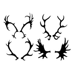 Set of silhouettes of deer and elk horns vector