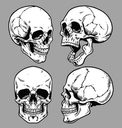 set skull in hand drawing style vector image