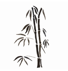 Bamboo branches isolated on the white background vector image vector image