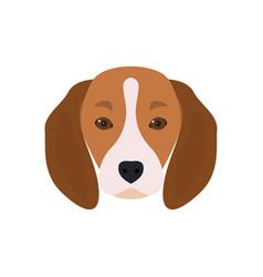 lovely head bearded dog beagle vector image vector image