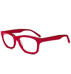 red glasses vector image vector image
