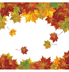 autumn colorful leaves vector image