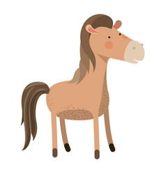 horse cartoon colorful silhouette in white vector image vector image