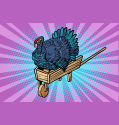 a turkey on a wooden farm wheelbarrow vector image
