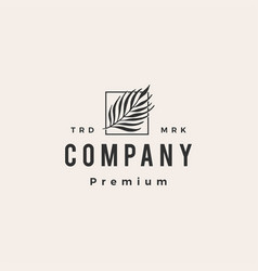 areca palm square hipster vintage logo icon vector image