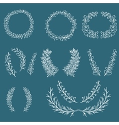 Branch ornament vector