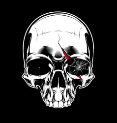 evil skull with spiderweb vector image