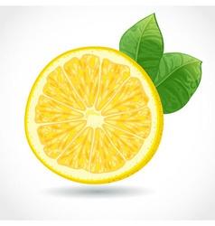 Fresh juicy piece of lemon isolated on white vector