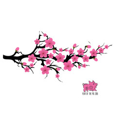 japan cherry blossom branching tree japanese vector image