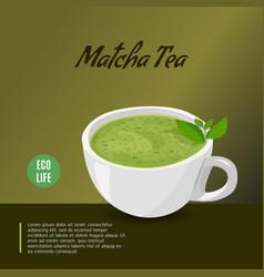 Matcha tea design template japanese type tea vector