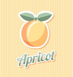 Retro apricot vector