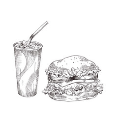 soft drink and burger fast food poster vector image