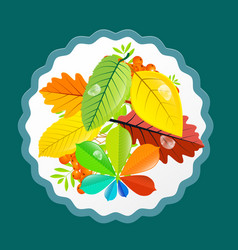 autumn leaves design flat retro colorful vector image