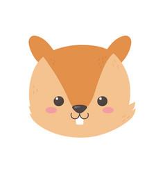 cute squirrel head cartoon icon vector image