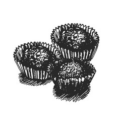 hand drawn of candy vector image