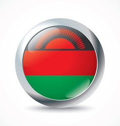 Malawi flag button vector image