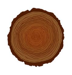 natural wood tree circle ring isolated vector image