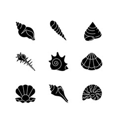 Sea shells black glyph icons set on white space vector