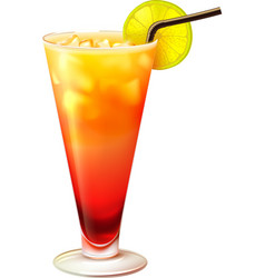 Tequila sunrise cocktail realistic vector image