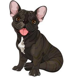 Cute bulldog vector image
