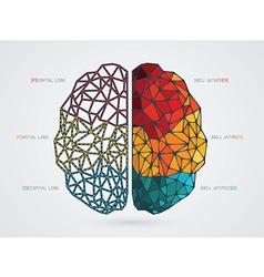 a brain icon vector image