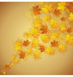 Autumn maple leaves stream vector image