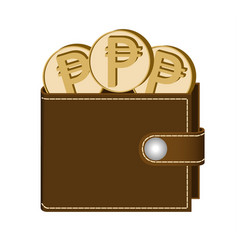 Brown wallet with peso coins vector