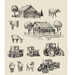 farm and animals hand drawn vector image