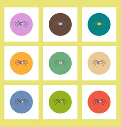 Flat icons halloween set of spooky spider concept vector