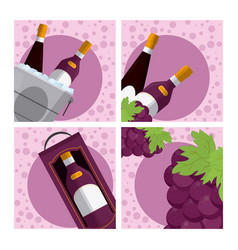 set of wine collection vector image