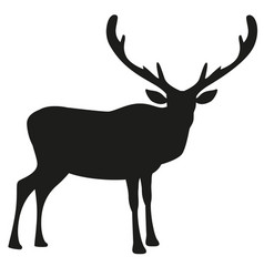 Silhouette reindeer with big antlers isolated vector