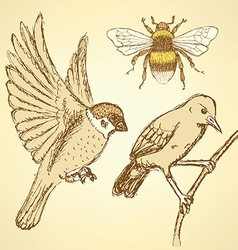 Sketch birds and bee in vintage style vector