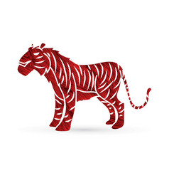 tiger cartoon graphic vector image