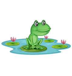A pond with a frog vector image
