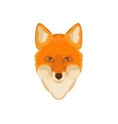 orange fox head image wild animal wildlife vector image