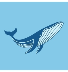 Blue whale icon vector