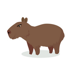 capybara cartoon icon in flat design vector image