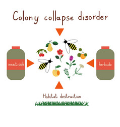 Colony collapse disorder vector
