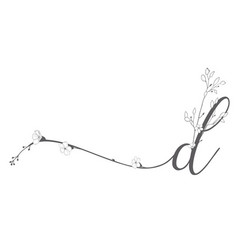 hand drawn floral d monogram and logo vector image