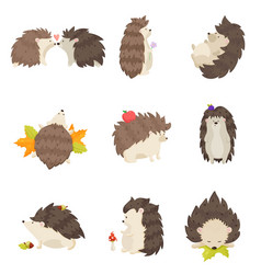 Set of cute hedgehogs in different poses and vector
