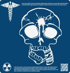 Skull X ray 5 vector