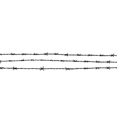 barbed wire MG 0751 vector image