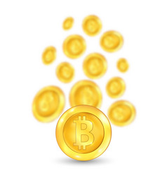 bitcoin bit coin digital currency vector image