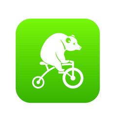 bear on a bike icon digital green vector image