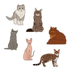 Cat breeds vector