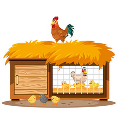 Chicken coops and chickens on white background vector