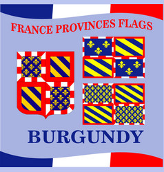 Flag of french province burgundy vector